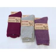 Собачьи женские носки  махровые DMDBS B18-050 оптом