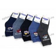 Носки детские Dmdbs для мальчиков махра С102 оптом